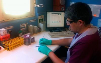 Tecnología de punta revoluciona los tiempos para resultados de exámenes de nuestros pacientes