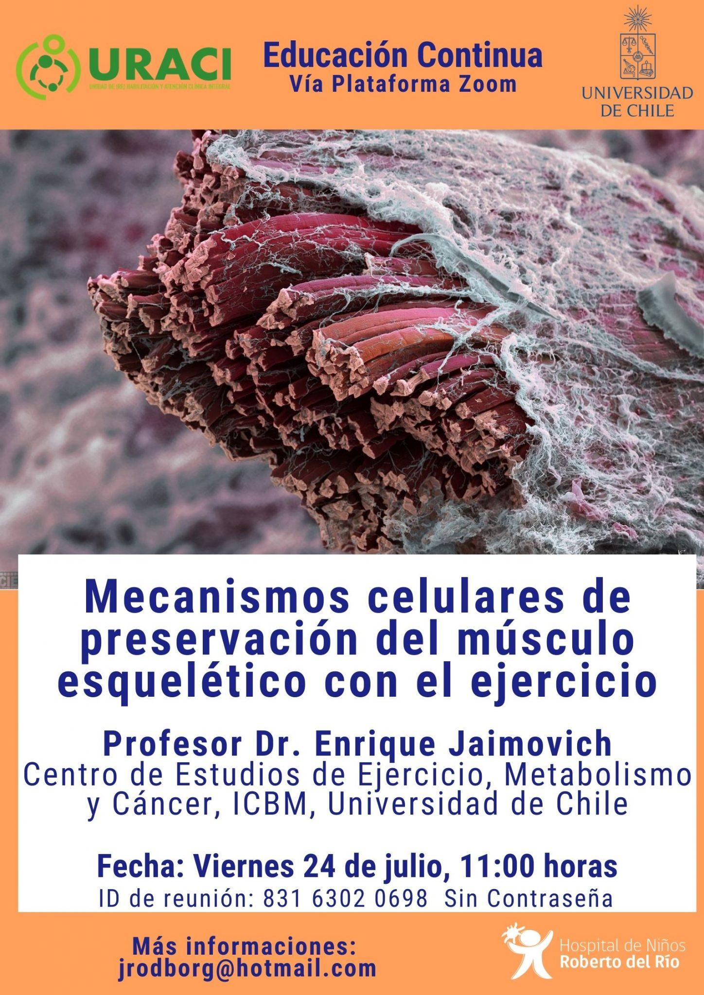 """Tema: """"Mecanismos celulares de preservación del músculo esquelético con el ejercicio"""""""